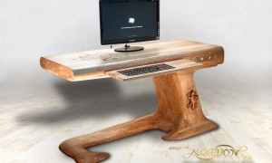 Lizard_desk_ses_1