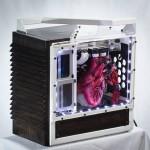 Heartbeat Computer Build (3)