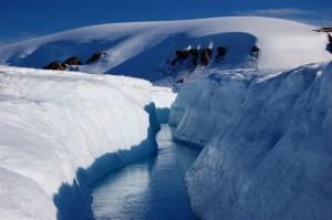 Arctic11-635x422