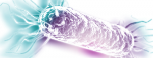 rcj_03_Microbial-Robotics_Synthetic-Biology