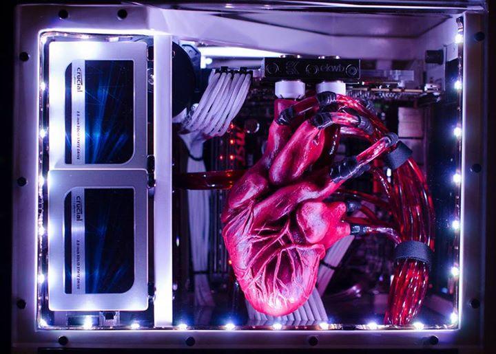 [MOD] Heartbeat Computer Build