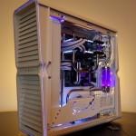 Purpura 03
