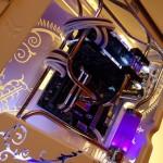 Purpura 10