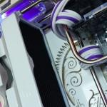 Purpura 30