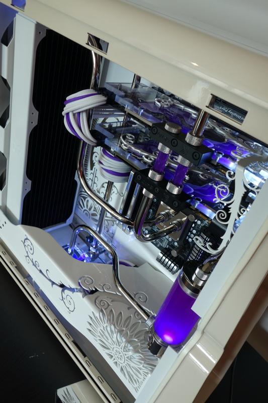 Purpura 31