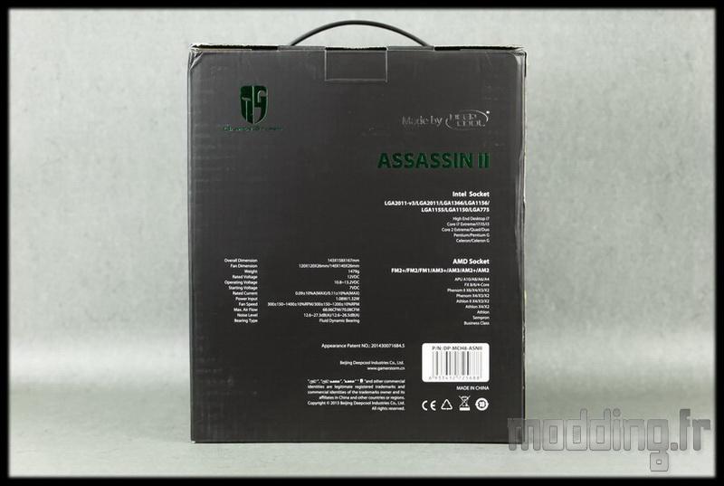 Assassin II 02